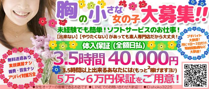 新宿・歌舞伎町デリバリーヘルス貧乳パラダイス