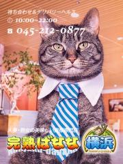 関内・曙町 人妻デリヘル 完熟ばなな横浜